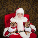 Judy Carbauh's Cooper and Toula visited with Santa in December 2012.