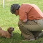 Lini Federici gives her puppy some last minute encouragement as the class is set to begin. Great concentration!