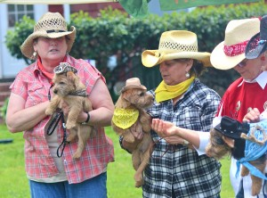 Cowgirls in the costume class with their well turned out terriers. Go git 'em girls!