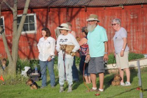 Lure coursing in the evening light ... quite a serious bunch! Thanks, Jim Sternberg for your expertise running the lure.