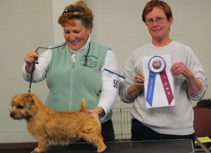 Tony wins best in stakes for breeder/co-owner Lori Pelletier.