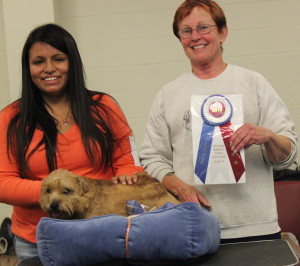 Bobo thought a dog bed was the best BIS trophy ever! He is shown with Judge Sheila Robbins and is friend Christina Fuller.